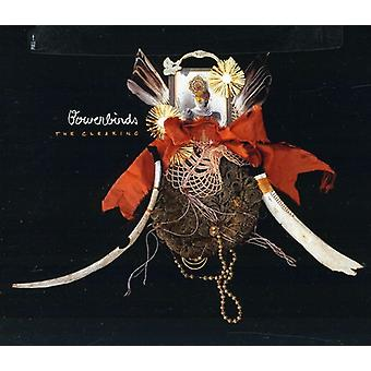 Bowerbirds - Clearing [CD] USA import