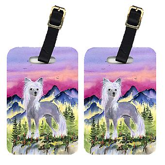 Carolines Treasures  SS8326BT Pair of 2 Chinese Crested Luggage Tags