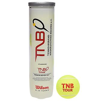 Wilson Unisex TNB Balls C99