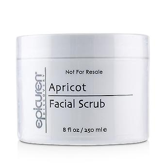 Apricot Facial Scrub - For All Skin Types, except Acneic & Rosacea (Salon Size) 250ml/8oz