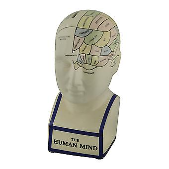 Map of Human Mind Colored Ceramic Psychology Bust Coin Bank Brain Statue Room Decor Sculpture