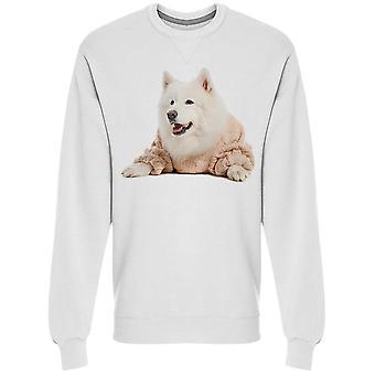 Süße Samojeden Hund In warmen Pullover Sweatshirt Men's -Bild von Shutterstock