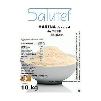 Teff flour 10 kg of powder