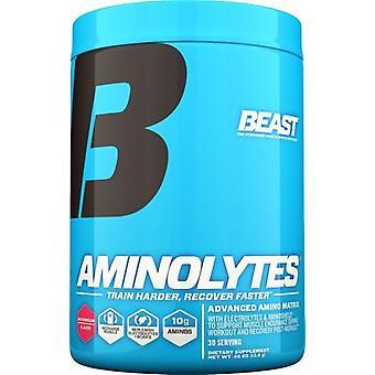 Beast Sports Nutrition Aminolytes  414 gr
