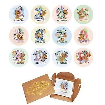 12 Pcs Month Sticker Baby Photography Milestone Memorial Monthly Card Number