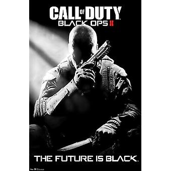 Call of Duty Black Ops II - Stealth Poster Print