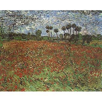 Champ avec des coquelicots, Vincent Van Gogh, 60x50cm