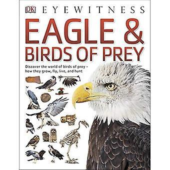 Eagle & rovfåglar (Eyewitness)