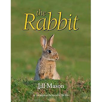 The Rabbit by Jill Mason - David Mason - 9781906122980 Book