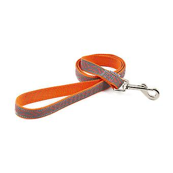 Ancol Reflective Bone Dog Lead