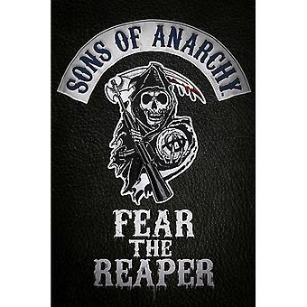 Sons of Anarchy Fear the Reaper Maxi Poster
