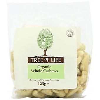Tree Of Life - Organic Cashew Nuts - Whole