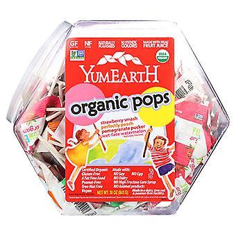 Yum Earth Lollipop Organic, Counter Bin 3.2 LBS