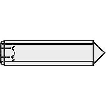 TOOLCRAFT 827337 Grub tornillo M3 10 mm acero 20 PC