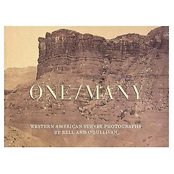 One/Many: Western American Survery Photographs by Bell and O'Sullivan