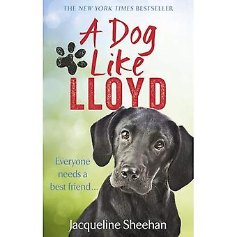 Un cane come Lloyd