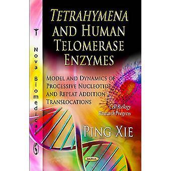 Tetrahymena & Human Telomerase Enzymes - Model & Dynamics of Processiv