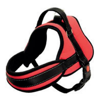 Arppe Arnés Max 8 Rojo (Dogs , Collars, Leads and Harnesses , Harnesses)