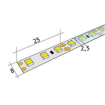 Jandei Led Strip 12V DC 4200K SMD2835 120 LED m Außenspule 5m