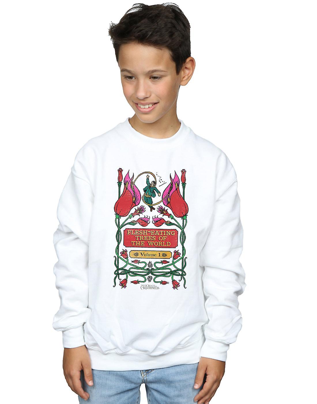 Fantastic Beasts Boys Flesh Eating Trees Sweatshirt