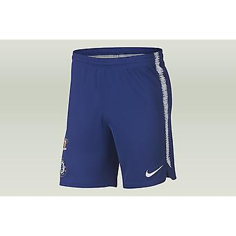 Nike Chelsea FC Dri Fit Squad Short K 919894496 football all year men trousers