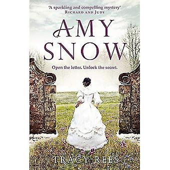 Amy de sneeuw: De Richard & Judy Bestseller