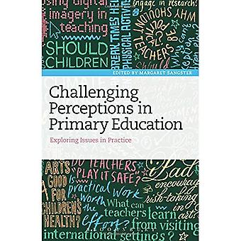 Challenging Perceptions in Primary Education