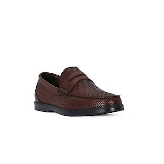 Sapatos de flor planta IGI & co