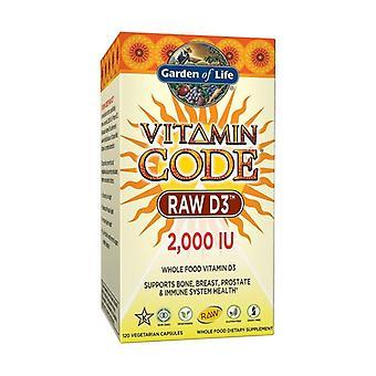 Vitaminkod rå D3 2000 iu 120 grönsakskapslar