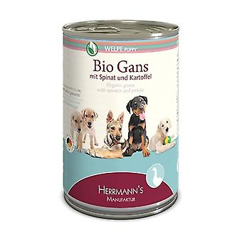 Dog Food for Puppies Goose with Spinach None