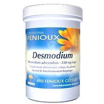 Fenioux Desmodium 480 Kapseln