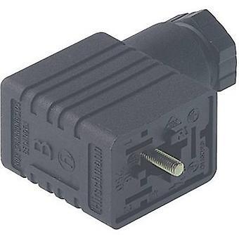 Hirschmann 934 456-100 GM 216 NJ kabel Socket, vrij configureerbaar zwart aantal pinnen: 2 + PE