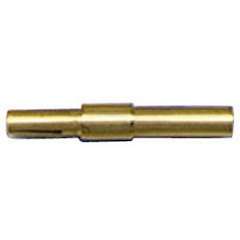 Bulgin SA3347 bala conector único contato série soquete (conectores): SA 10 computador (es)