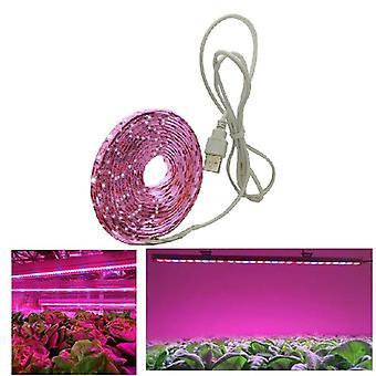 Full Spectrum Usb Grow Light Strip Chip Phyto Lamp For Plants Flowers