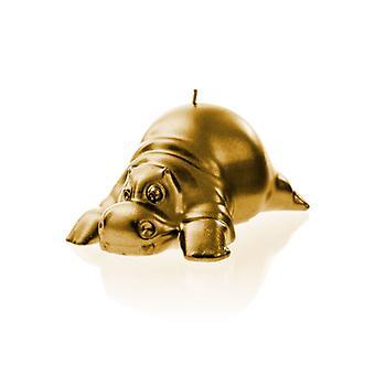 Guld Hippo Ljus