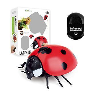Material Certificado® Ladybug com controle remoto IR - RC Toy Robô Controlável Inseto Vermelho