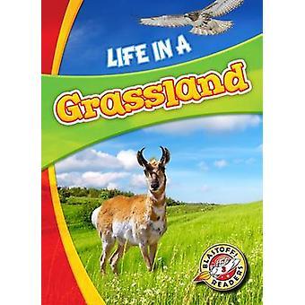 Life in a Grassland by Laura Hamilton Waxman - Laura Hamilton Waxman