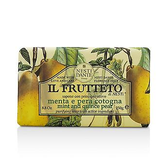 Nesti Dante Il Frutteto purificante Soap - menta & mela cotogna Pera 250g/8.8 oz