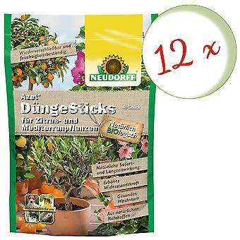 Sparset: 12 x NEWDORFF Azet® FertilizerSticks para plantas cítricas y mediterráneas, 40 palos