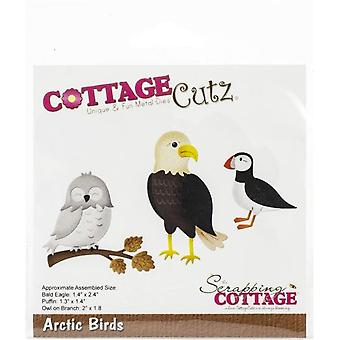 Scrapping Cottage Arctic Birds