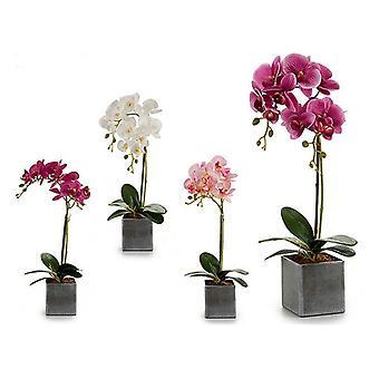 Decorative Flower Plastic Orchid