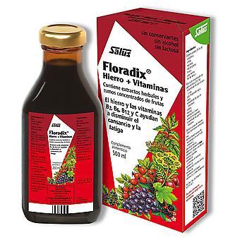 Salus Floradix Hierro + Vitaminas