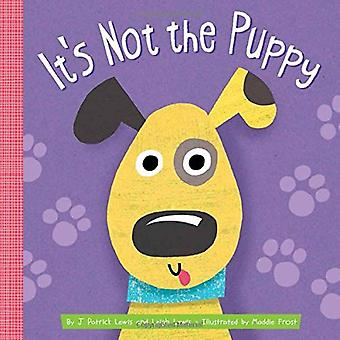 It's Not the Puppy by J. Patrick Lewis - 9781681524092 Book