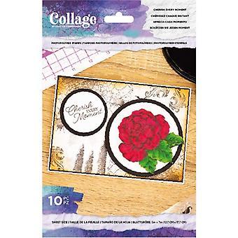 Crafter's Companion Vårda varje ögonblick tydliga frimärken