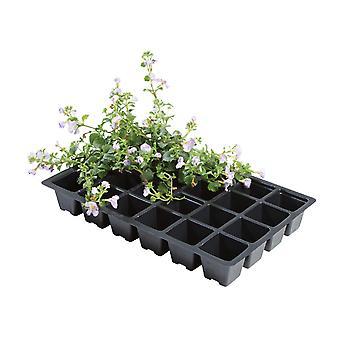 Worth Gardening 24 Cell Inserts x 5 W0014