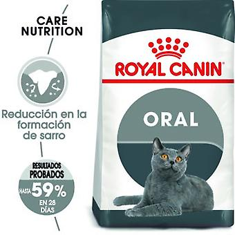 Royal Canin  Oral Care Pienso de Gato Adulto con Sensibilidad Oral