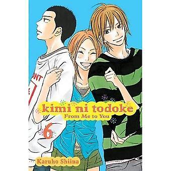 Kimi ni Shusseitodoke Vol 6