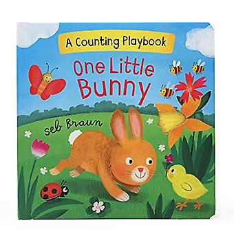 One Little Bunny: A Counting Playbook [Board book]