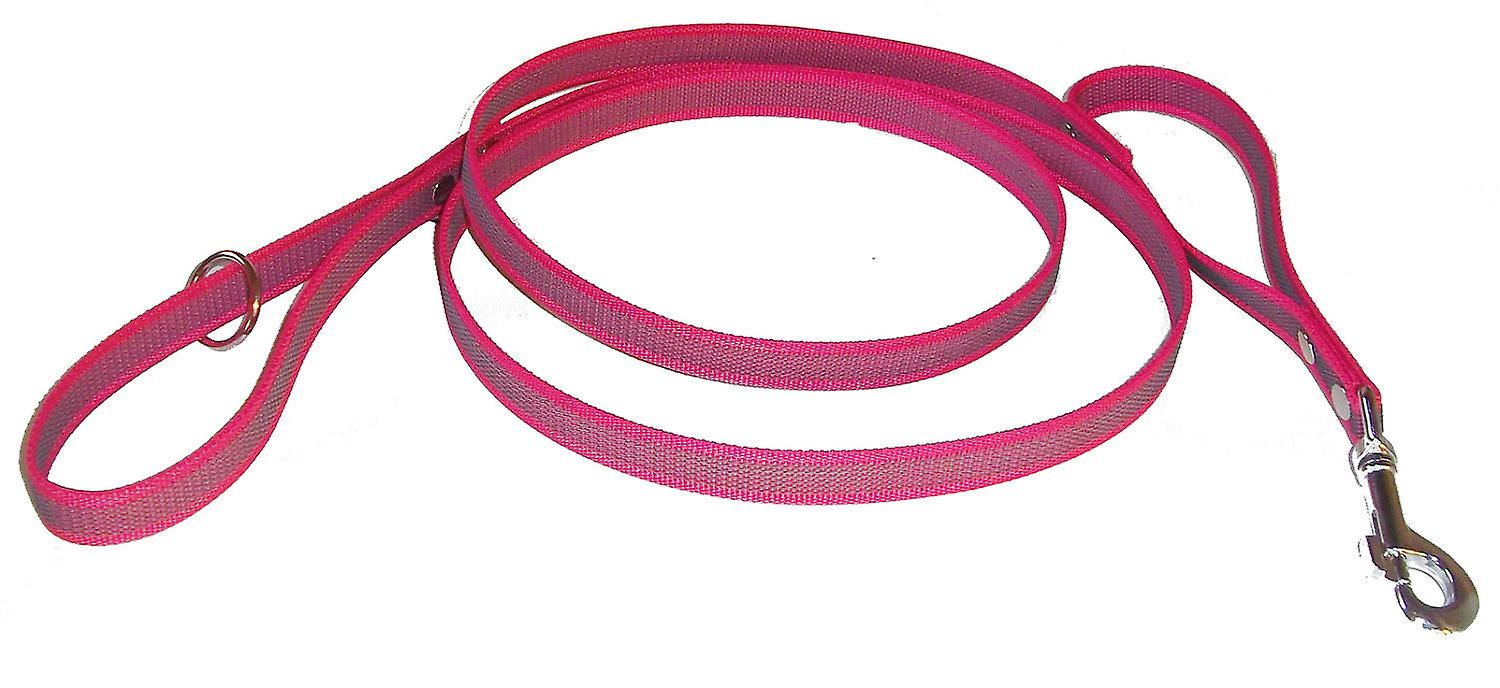 Super grip leash with extra handle