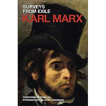 Surveys from Exile: Political Writings Volume 2